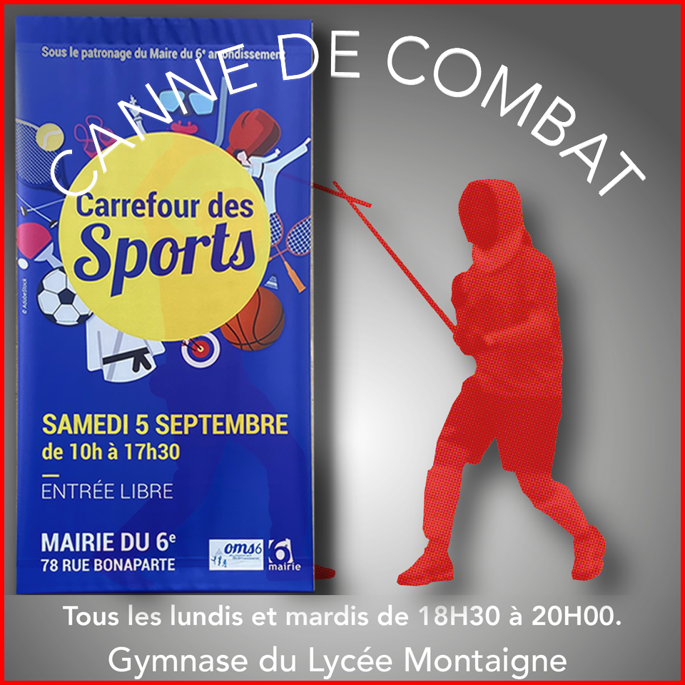 Carrefour des Sports - canne de combat